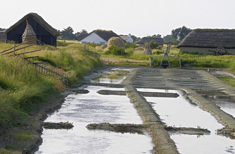 L'Immobilière Vendéenne vous présente le Pays de Monts côté marais